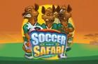 soccer1-140x91