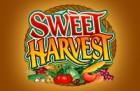 thumb_sweet-harvest1-140x91